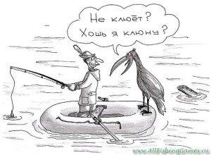 chto delat esli ryba ne kljuet