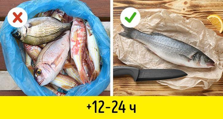 kak sohranit rybu svezhej