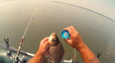 lovlya na sosku nesportivnaya rybalka