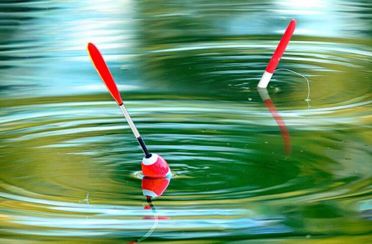 rybalka na poplavok pravila i tonkosti poplavochnoj lovli