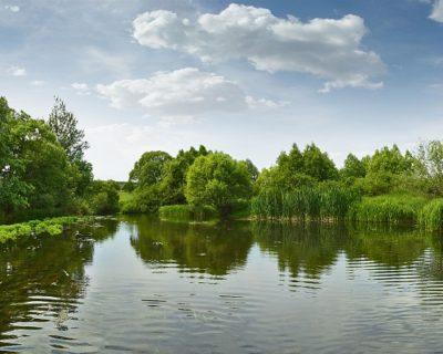rybalka v orlovskoj oblasti obzor vodoemov