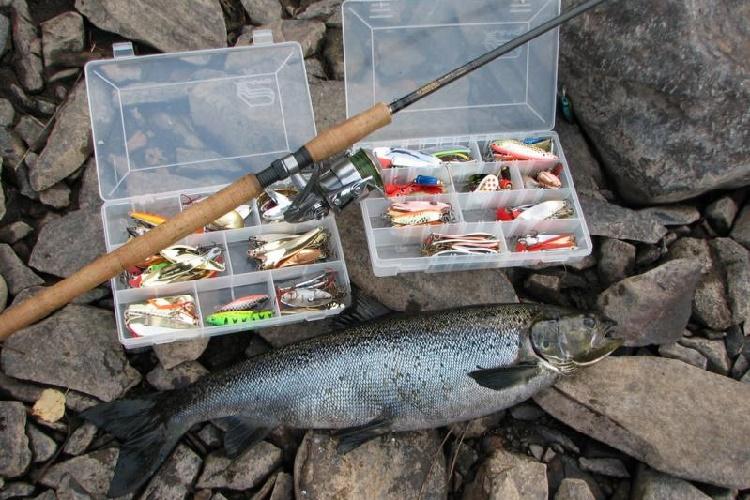 snasti dlya lovli lososevyh ryb