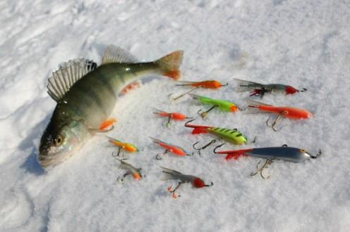 lovlya ryby na balansir sposoby i tehnika zimnej rybalki