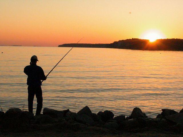 vybiraem snasti dlya rybalki obyazatelnyj atribut ljuboj rybalki