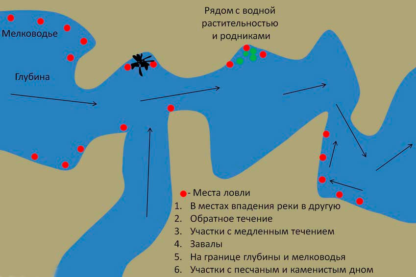 vybor mesta dlya lovli ryby